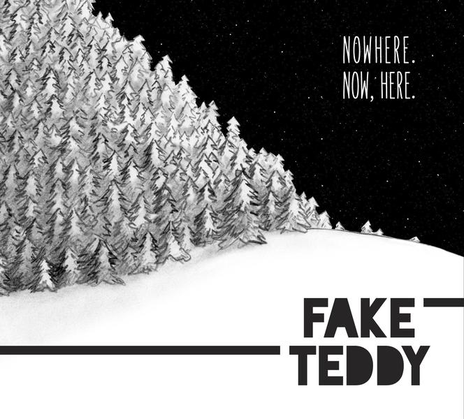 Fake Teddy
